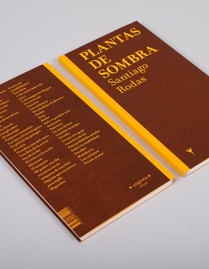 Plantas-de-sombra-1